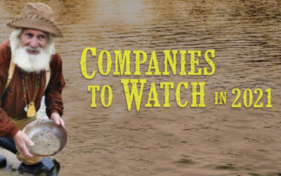 Companies to Watch in 2021